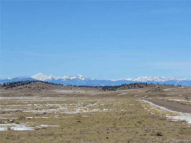 2019 Wahosta Trail, Hartsel, CO 80449 (#8358806) :: Arnie Stein Team | RE/MAX Masters Millennium