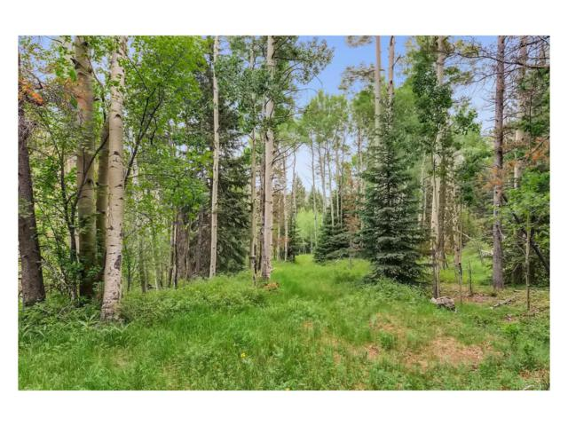 0 Cedar Road, Evergreen, CO 80439 (#8360857) :: Thrive Real Estate Group