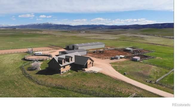 36155 County Road 51, Hayden, CO 81639 (#8361630) :: The Peak Properties Group