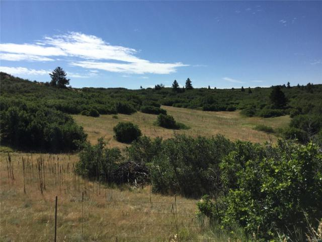 3796 N State Highway 67, Sedalia, CO 80135 (MLS #8362983) :: 8z Real Estate