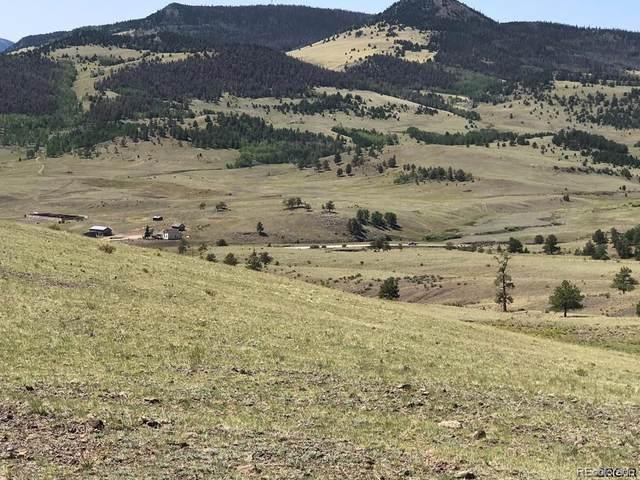 Hwy 9, Guffey, CO 80820 (MLS #8363990) :: Find Colorado