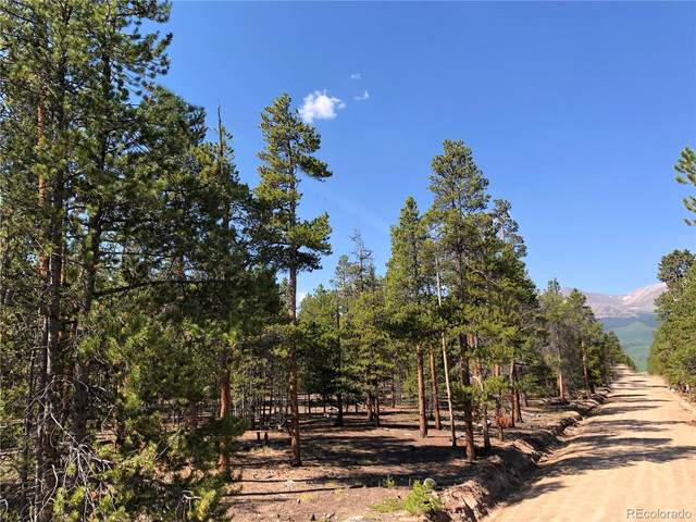 682 Cedar Drive, Twin Lakes, CO 81251 (MLS #8365091) :: Bliss Realty Group