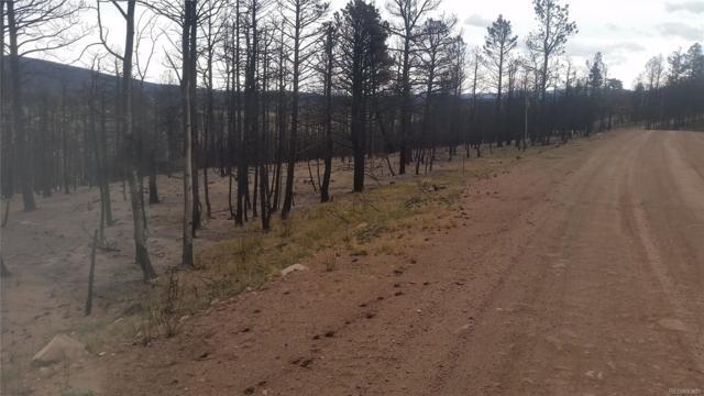 424 Wagon Mesa Loop, Fort Garland, CO 81133 (#8368803) :: The Heyl Group at Keller Williams