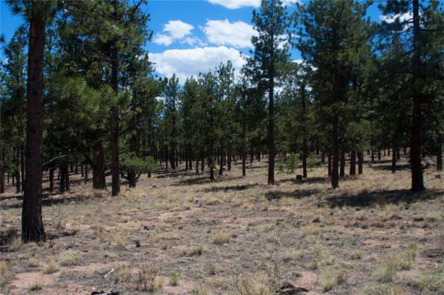 16400 Pine Grove Pkwy, Buena Vista, CO 81211 (MLS #8374335) :: 8z Real Estate