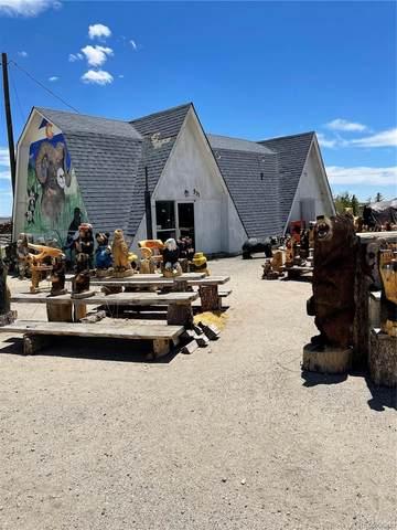 531 Us Highway 285, Fairplay, CO 80440 (#8376108) :: The HomeSmiths Team - Keller Williams