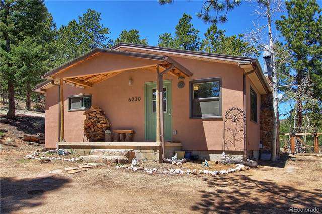 6230 Waterfall Loop, Manitou Springs, CO 80829 (#8376556) :: The Gilbert Group