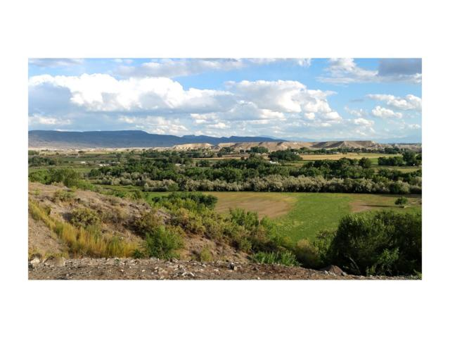 20298 Fox Ridge Drive, Austin, CO 81410 (#8377154) :: Structure CO Group