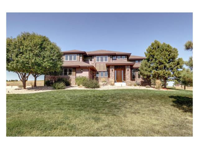 46729 Silver Fir Street, Parker, CO 80138 (#8377403) :: The Sold By Simmons Team