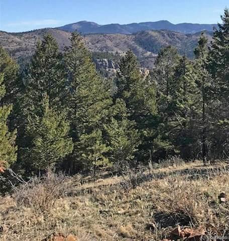 0000 Hidden Wilderness Road, Idaho Springs, CO 80452 (#8378552) :: iHomes Colorado
