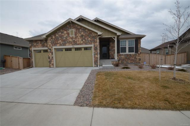 2904 E 159th Way, Thornton, CO 80602 (#8381644) :: The Heyl Group at Keller Williams