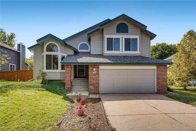 9295 Windsor Way, Highlands Ranch, CO 80126 (#8382802) :: The HomeSmiths Team - Keller Williams