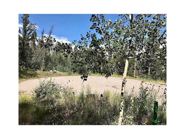 325 Park View Drive, Fairplay, CO 80440 (MLS #8383131) :: 8z Real Estate