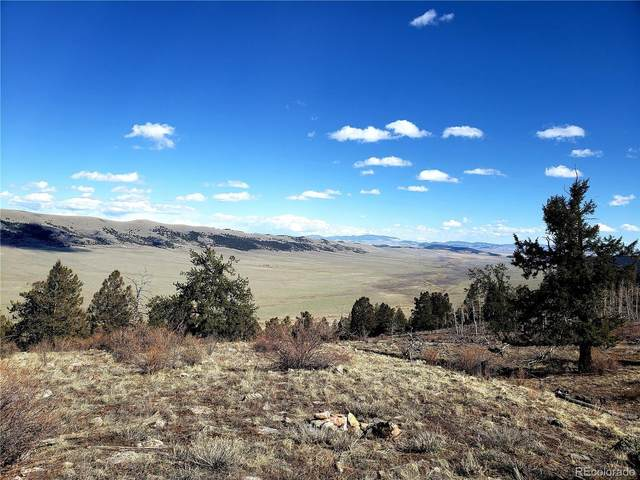 000 Middle Fork Vista, Fairplay, CO 80440 (#8385234) :: The Artisan Group at Keller Williams Premier Realty