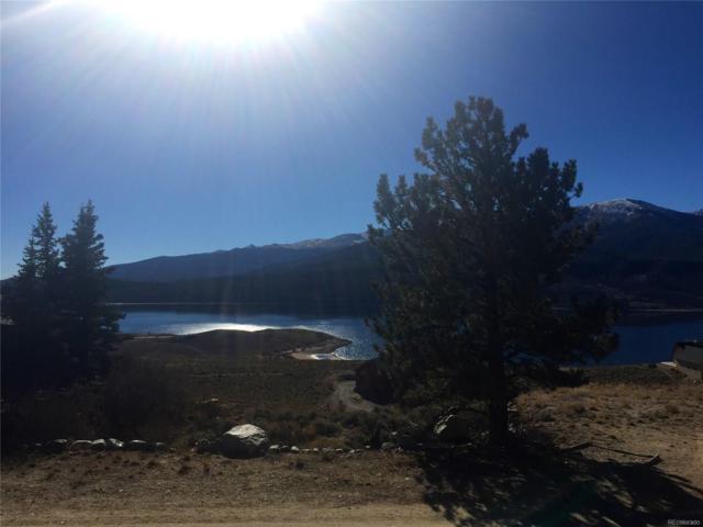 389 Twin Peaks Drive, Twin Lakes, CO 81251 (MLS #8387264) :: 8z Real Estate