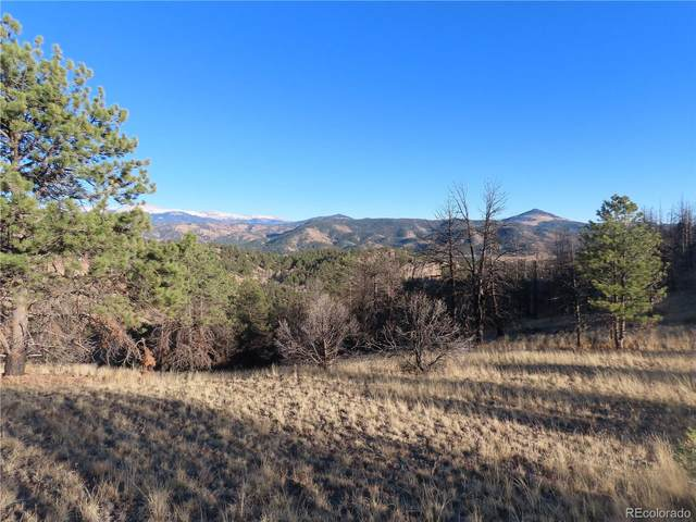 88 Chateau Vista Drive, Florissant, CO 80816 (MLS #8389051) :: Bliss Realty Group