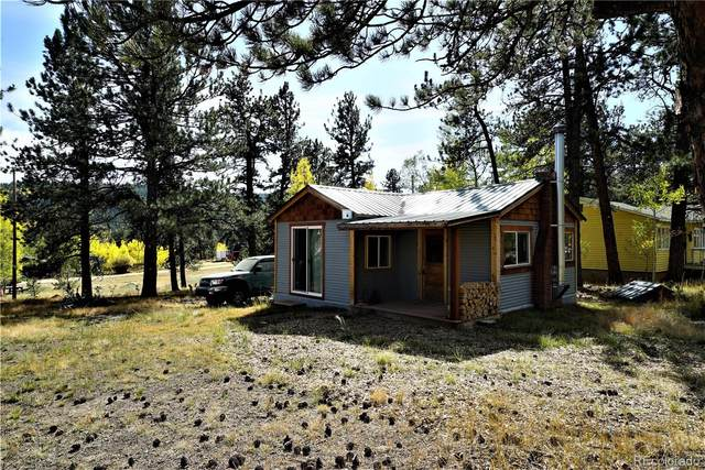 98 Neal Road, Bailey, CO 80421 (#8391001) :: The DeGrood Team