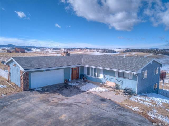 579 County Road 25, Divide, CO 80814 (#8392539) :: Stephanie Fryncko | Keller Williams Integrity