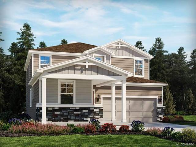 3860 Sandy Vista Lane, Castle Rock, CO 80104 (#8393162) :: The Colorado Foothills Team   Berkshire Hathaway Elevated Living Real Estate