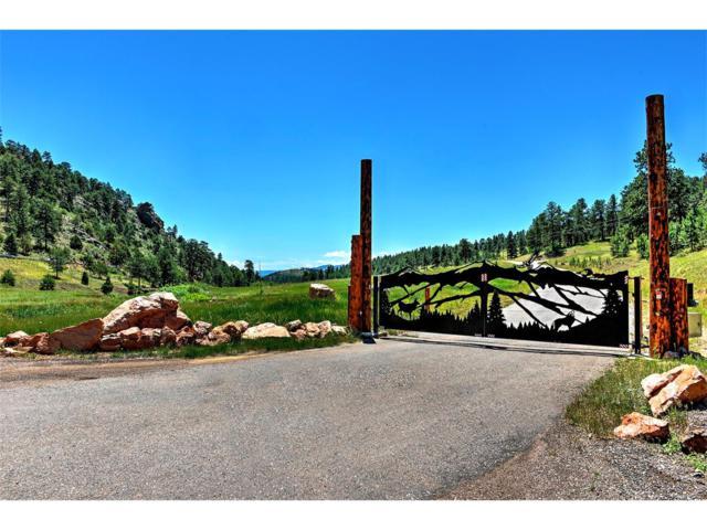 34401 Natural Spring Road, Pine, CO 80470 (MLS #8393672) :: 8z Real Estate