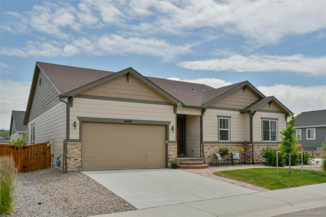6420 Agave Avenue, Castle Rock, CO 80108 (#8395703) :: Berkshire Hathaway HomeServices Innovative Real Estate