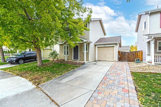 10667 Forester Place, Longmont, CO 80504 (#8395757) :: The DeGrood Team