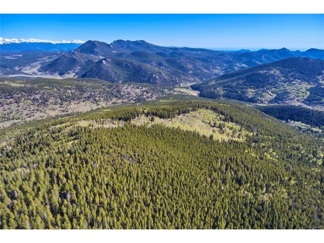 Seldom Seen Roads, Golden, CO 80403 (#8398165) :: Bring Home Denver