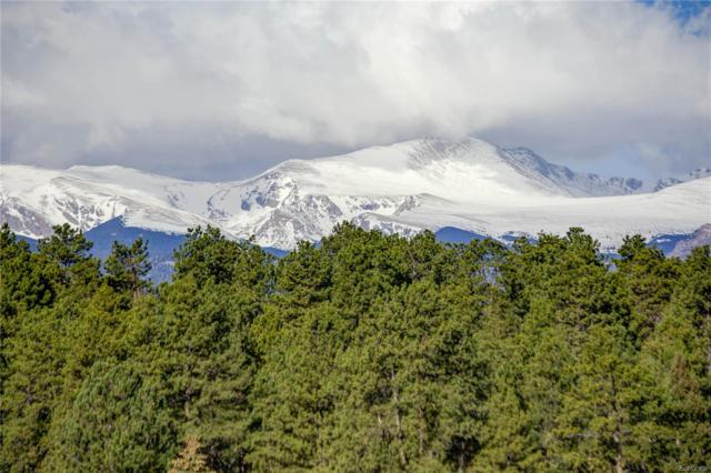 Lot 2 TBD Red Lily Place, Evergreen, CO 80439 (MLS #8398453) :: 8z Real Estate