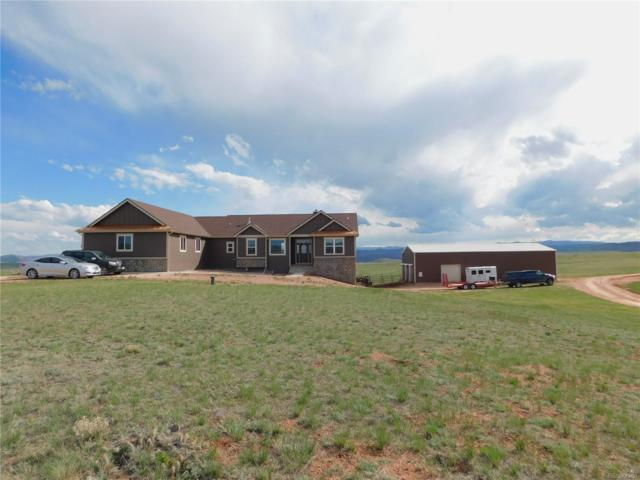 624 Ten Mile Canyon, Livermore, CO 80536 (MLS #8398543) :: 8z Real Estate