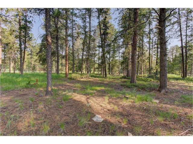 Oehlmann Avenue, Conifer, CO 80433 (MLS #8398932) :: 8z Real Estate