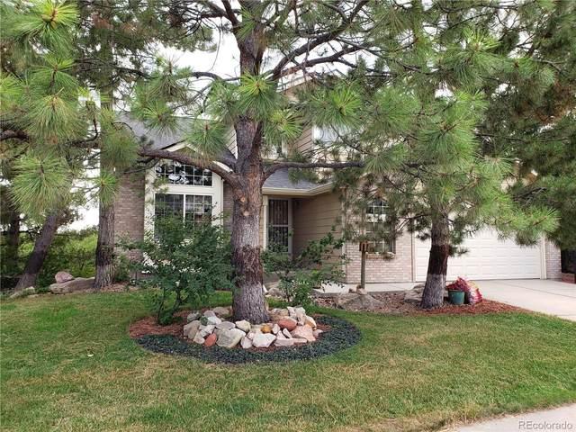 5690 E Tabor Drive, Castle Rock, CO 80104 (#8399039) :: HomeSmart Realty Group