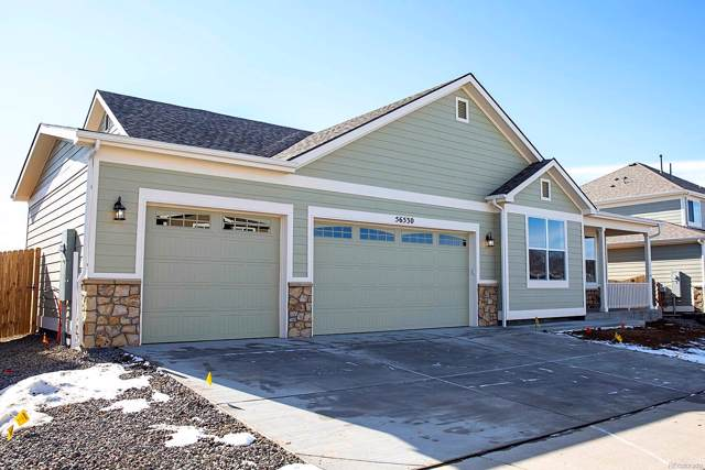 56300 E 25th Avenue, Strasburg, CO 80136 (MLS #8403629) :: 8z Real Estate