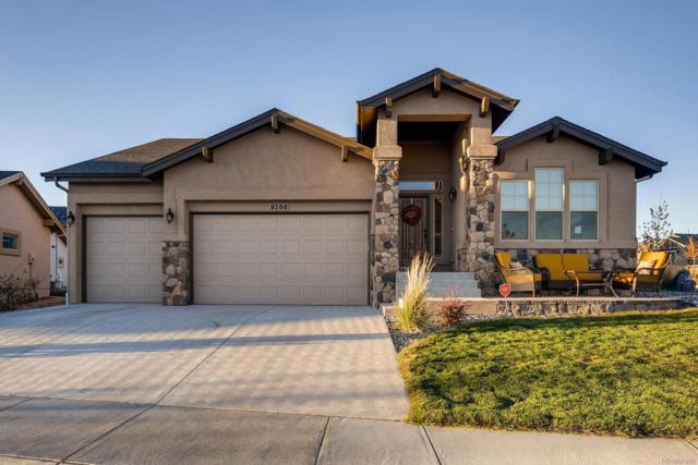 9286 Kathi Creek Drive, Colorado Springs, CO 80924 (#8404130) :: My Home Team