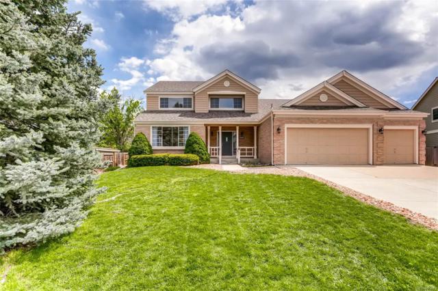 8278 W Chestnut Avenue, Littleton, CO 80128 (#8404749) :: Wisdom Real Estate