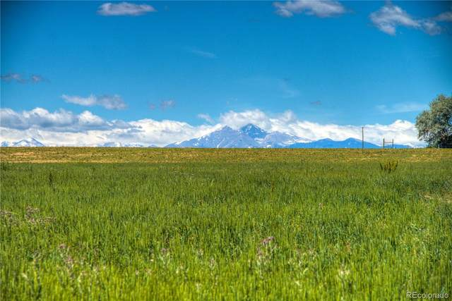 9211 Meadow Farms Drive, Milliken, CO 80543 (MLS #8412609) :: Neuhaus Real Estate, Inc.