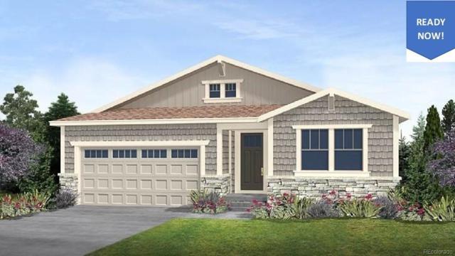 23978 E Caleb Place, Aurora, CO 80016 (#8413131) :: HomeSmart Realty Group