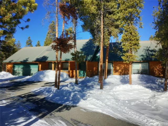 818 Baby Doe Drive, Leadville, CO 80461 (#8413638) :: The Peak Properties Group