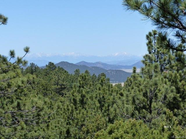 # Sugarloaf Road, Silver Cliff, CO 81252 (#8417097) :: The DeGrood Team