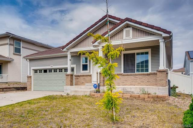 5360 Liverpool Street, Denver, CO 80249 (#8418652) :: The Colorado Foothills Team   Berkshire Hathaway Elevated Living Real Estate