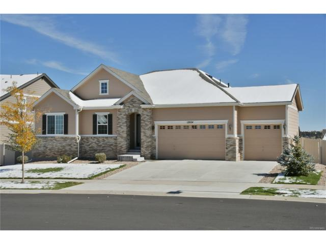 12024 Blakeford Street, Parker, CO 80134 (MLS #8420219) :: 8z Real Estate