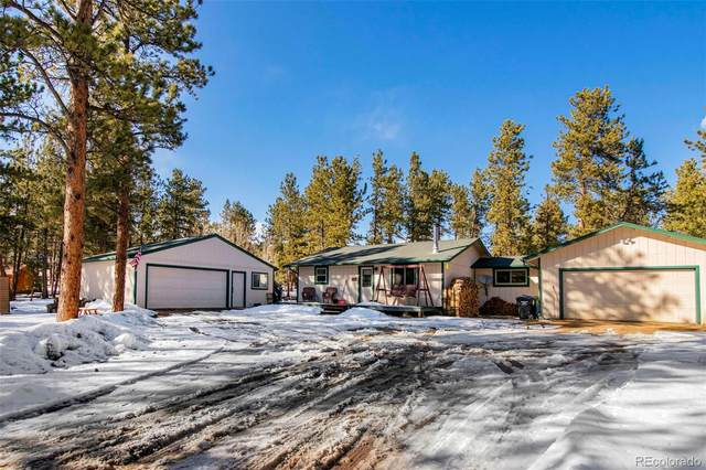 209 Gunsmoke Drive, Bailey, CO 80421 (#8424802) :: Mile High Luxury Real Estate