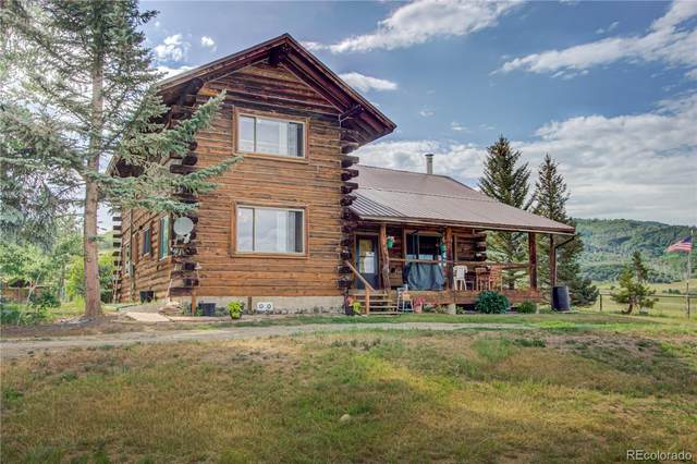 48320 County Road 56C, Steamboat Springs, CO 80487 (#8426351) :: The Artisan Group at Keller Williams Premier Realty
