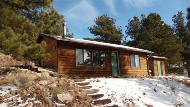 370 Wagon Wheel Road, Guffey, CO 80820 (#8430660) :: The Peak Properties Group