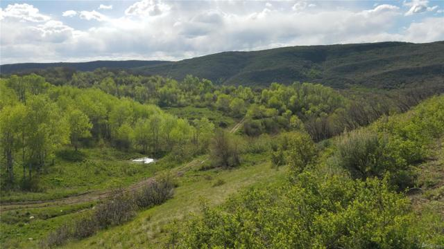 0 Highway 131, Oak Creek, CO 80467 (#8431368) :: Structure CO Group