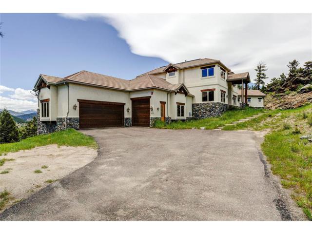 425 Upper Elk Valley Drive, Evergreen, CO 80439 (MLS #8431937) :: 8z Real Estate
