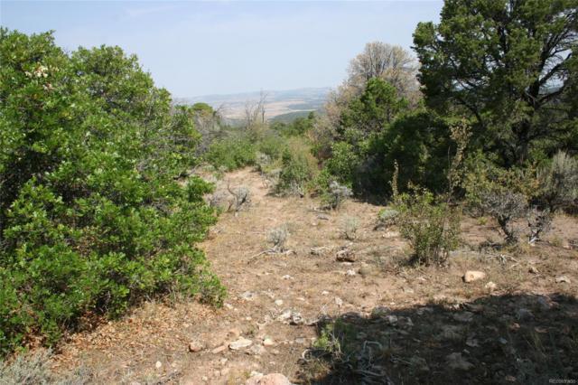 Elk Reserve Road, Glade Park, CO 81523 (#8432801) :: Bring Home Denver with Keller Williams Downtown Realty LLC