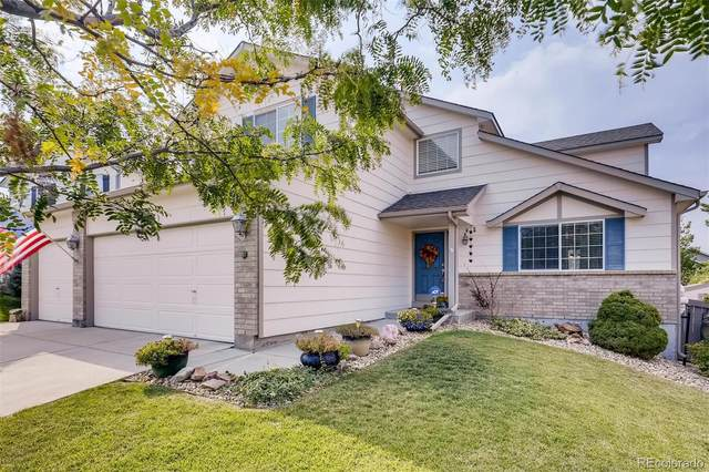 12581 Prince Creek Drive, Parker, CO 80134 (#8435942) :: The DeGrood Team