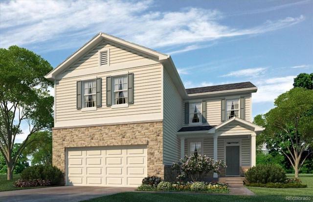 923 Birchdale Court, Windsor, CO 80550 (#8436563) :: Wisdom Real Estate