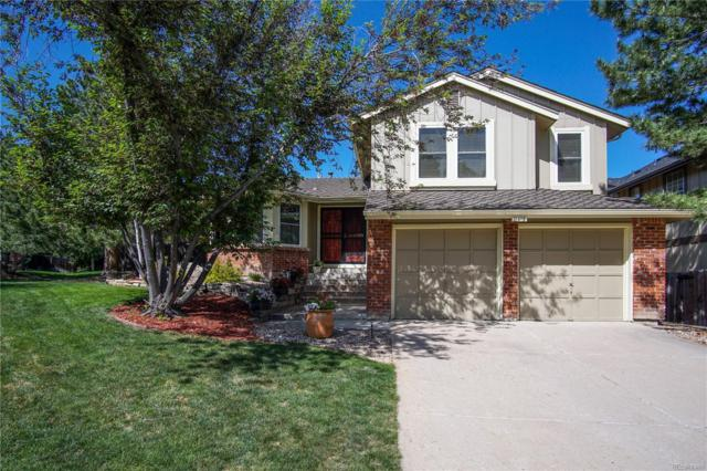 11415 San Joaquin Ridge Road, Littleton, CO 80127 (#8437331) :: The Pete Cook Home Group