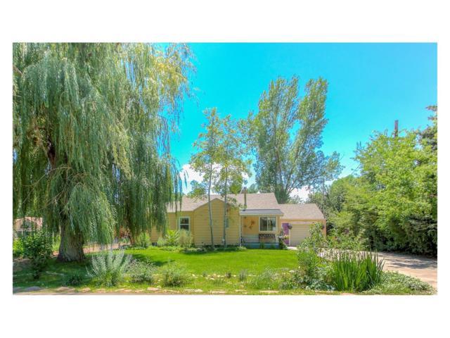 7800 Westview Drive, Lakewood, CO 80214 (MLS #8439543) :: 8z Real Estate