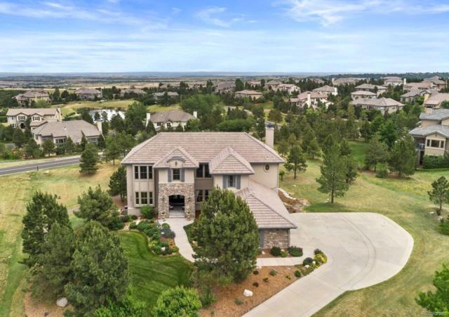 6126 Maroon Peak Place, Castle Rock, CO 80108 (#8439887) :: Sellstate Realty Pros